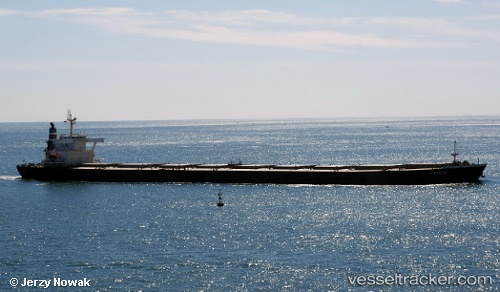 F Duckling Vessel F Duckling - Type of s...