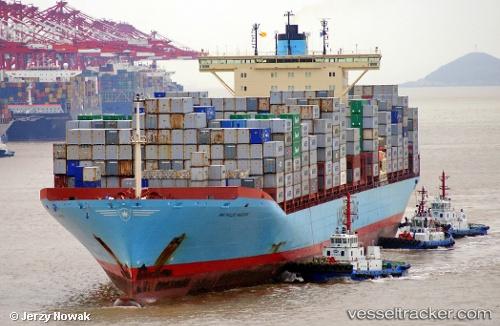 Cargo Ship Gerda Maersk IMO 9359052 by jojek