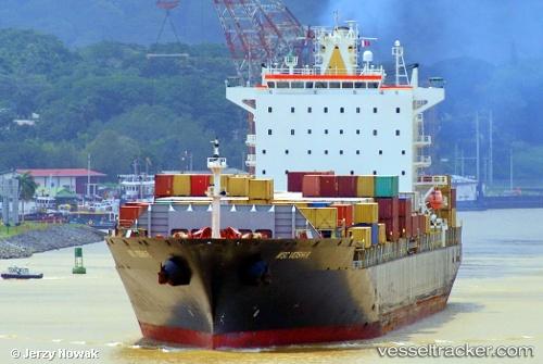 Cargo Ship MSC Vidisha R. IMO 9227326 by jojek