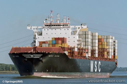 Frachtschiff MSC Avni IMO 9756729 by Springe
