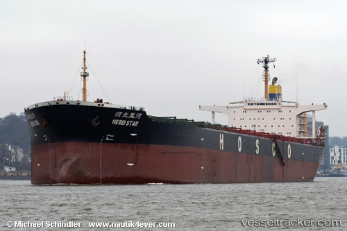 Cargo Ship Harita Copper IMO 8009507 by MSC Michi
