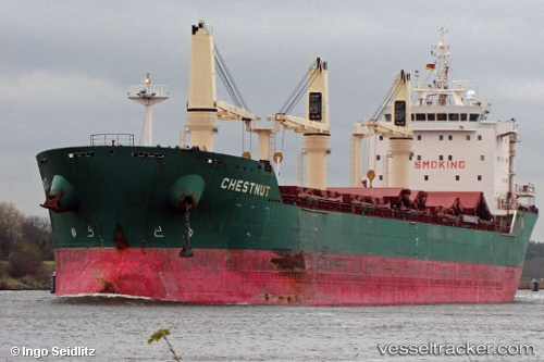 Cargo Ship Chestnut IMO 9477866 by insel