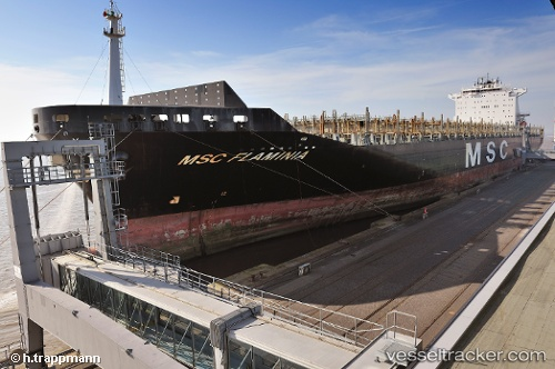 Грузовое судно MSC Flaminia IMO 9225615 by trappmann